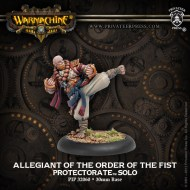 allegiant of the order of the fist protectorate solo