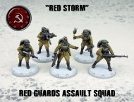 ssu red guards assault squad